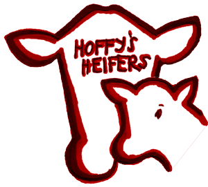 Hoffy's Heifers: Bred Heifers and Heifer Pairs